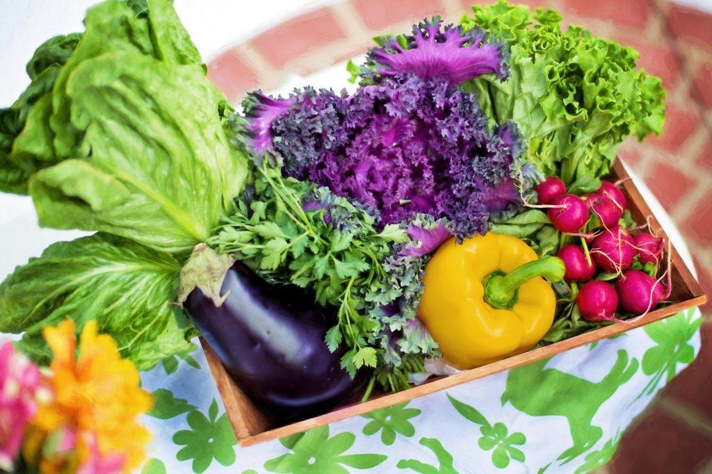 abwechslungsreiche ernährung